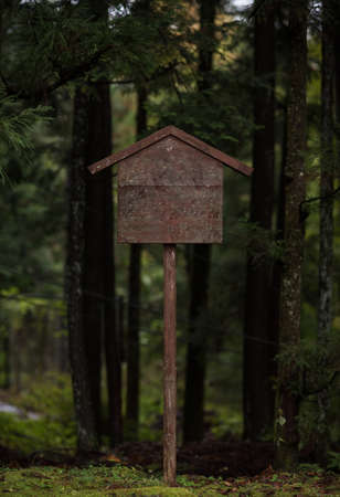 Old wooden sign in the middle of the pine forest Stock Photo