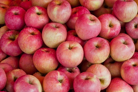 Pink lady apples Stock Photo