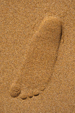 Single footprint on the beach sand photo