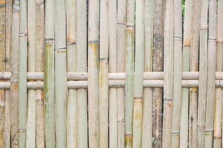 bamboo piece of  fence photo