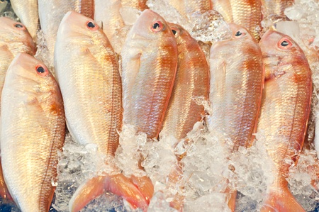Fresh red fishes with ice in market,Thailand photo