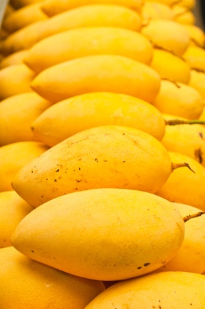 Mango in market, Thailand Stock Photo