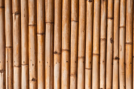 Brown bamboo fence photo