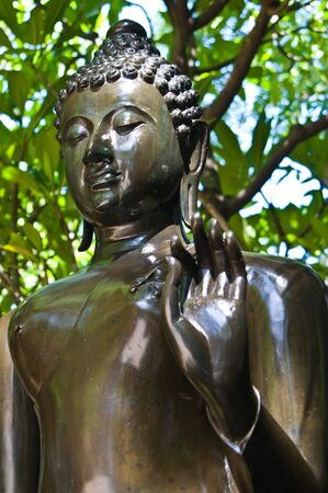 Bronze Buddha tree background photo