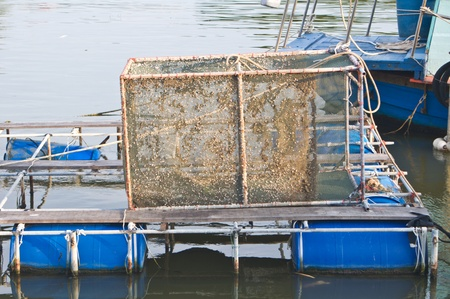 Fish cages in the lake photo