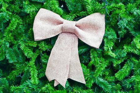Big bow on green leaf background photo
