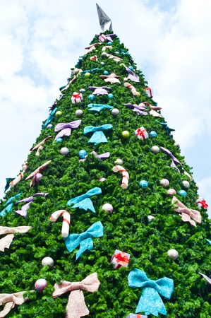 Colorful of big christmas tree  photo