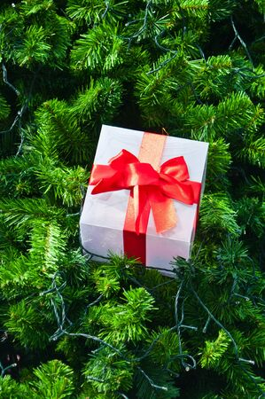 Gift box on christmas tree photo