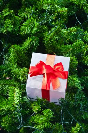 Gift box and red ribbon  on christmas tree photo