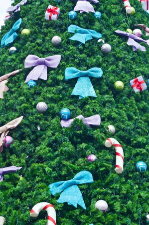 Colorful bow and gift on green leaf of christmas tree photo