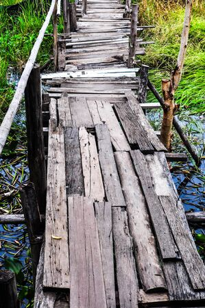 Wood bridge in the field ,Thailand photo