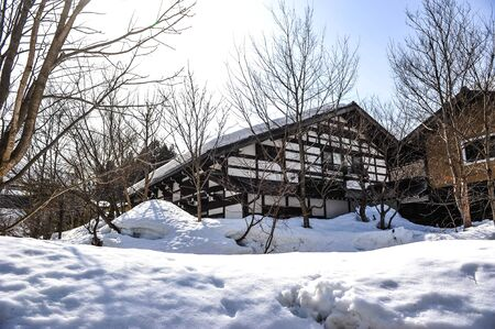 ancient japanese: Beautiful ancient japanese house and white garth snow