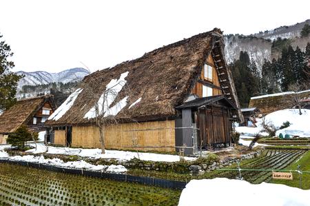 shirakawa go: Rice field near old wooden house in Shirakawa Go village,e of Japan Editorial
