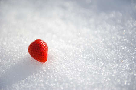 frash: Frash Strawberry On Snow