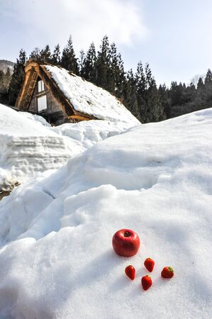 Strawberry and apple on white of snow in the Shirakawa-go  village,Japan Stock Photo