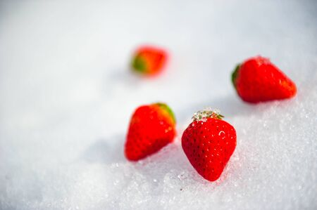 Fresh strawberries on ice of snow