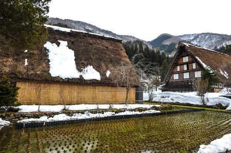 shrinkage: Rice field in the Shirakawa Go village