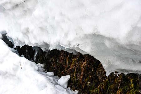 shrinkage: The melting of white snow