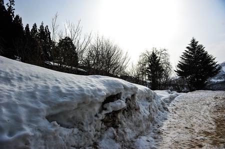 shrinkage: Snow effect of sunlight in Japan