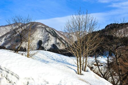 The beauty of white snow on the mountains in winter Stock Photo