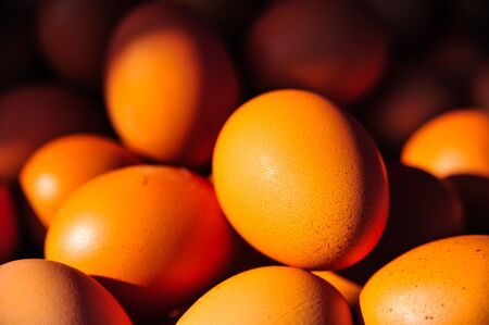ingradient: Beautiful colors of eggs in the morning