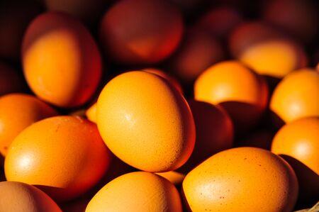 Fresh organic eggs for sale in supermarket