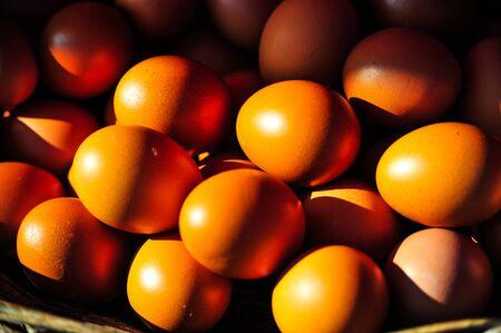 luster: Fresh eggs in the basket