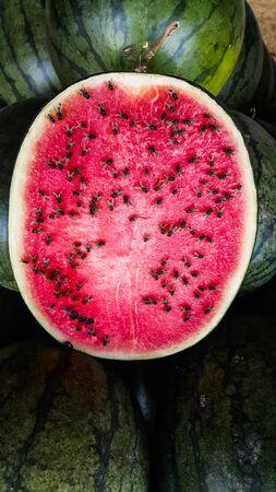 Huge flies eating watermelon