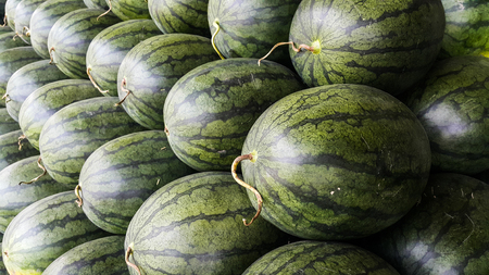 Business of watermelon for sale in the wholesale market of Thailand