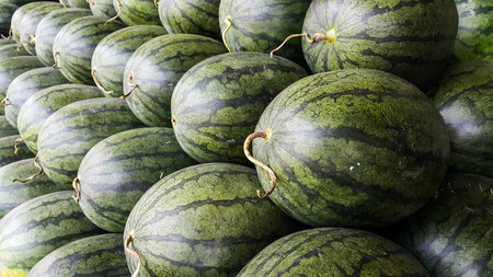 Overlapping of watermelon for sale in the wholesale market of Thailand
