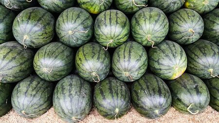 Overlapping of watermelon for sale in the wholesale market