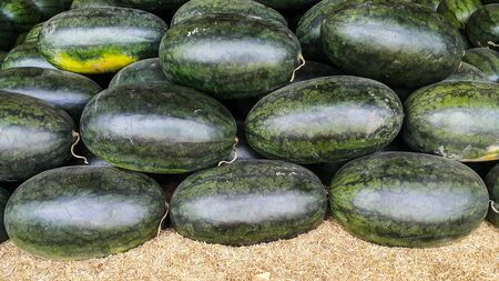 Overlapping of watermelon oval shape on the rice husk