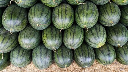 Top view of watermelon in the market Stock Photo