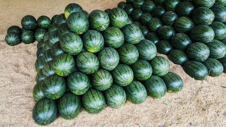A lot of watermelon in the local marke Stock Photo