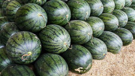 Watermelon for sale Stock Photo
