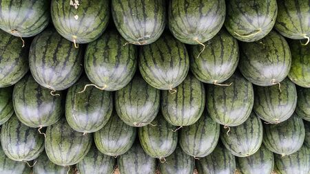 Row of watermelon for sale in the local market  of Thailand