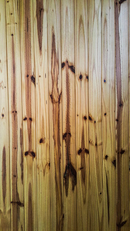 Sunlight effect to the pine wood wall