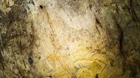 Arts of tree bark Stock Photo