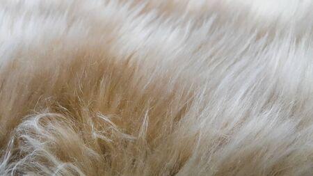 Softness of wool