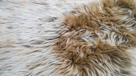White and brown wool