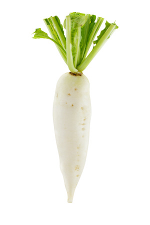 White radish on white background
