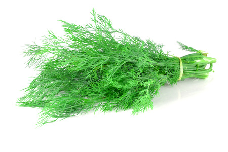 bunch of dill, tied with thread isolated on white background photo