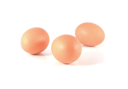 eggs isolated photo