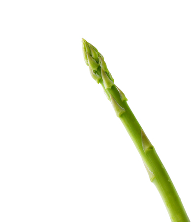 Asparagus isolated on white, clipping path included photo