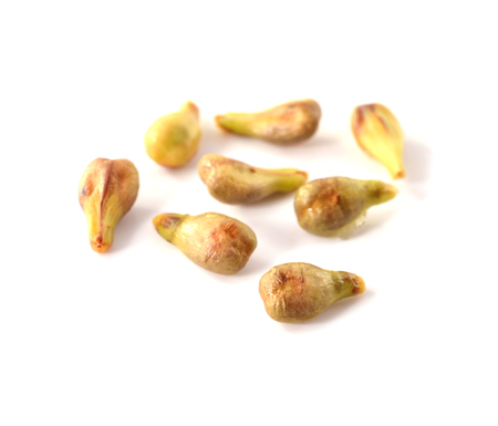 grape seeds closeup