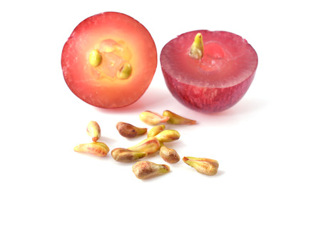 grape seeds closeup photo