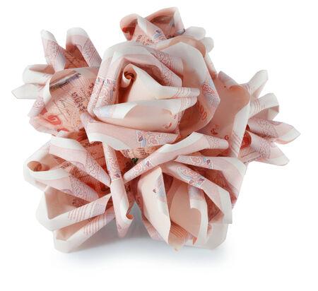 money flower photo