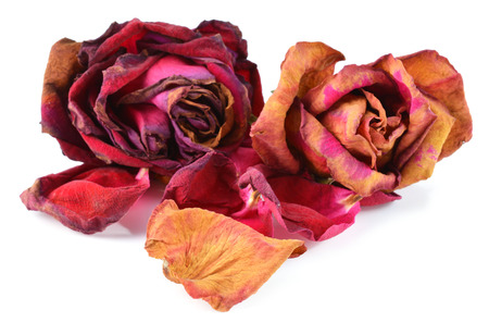 perish: Bunch of withered roses