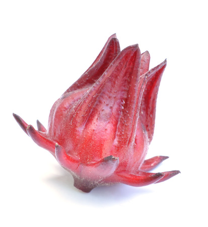 Hibiscus sabdariffa or roselle fruits photo