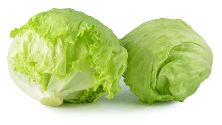 흰색 배경에 녹색 빙산의 상추